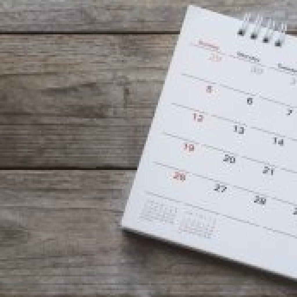 Калькулятор расчета дней отпуска на конкретную дату